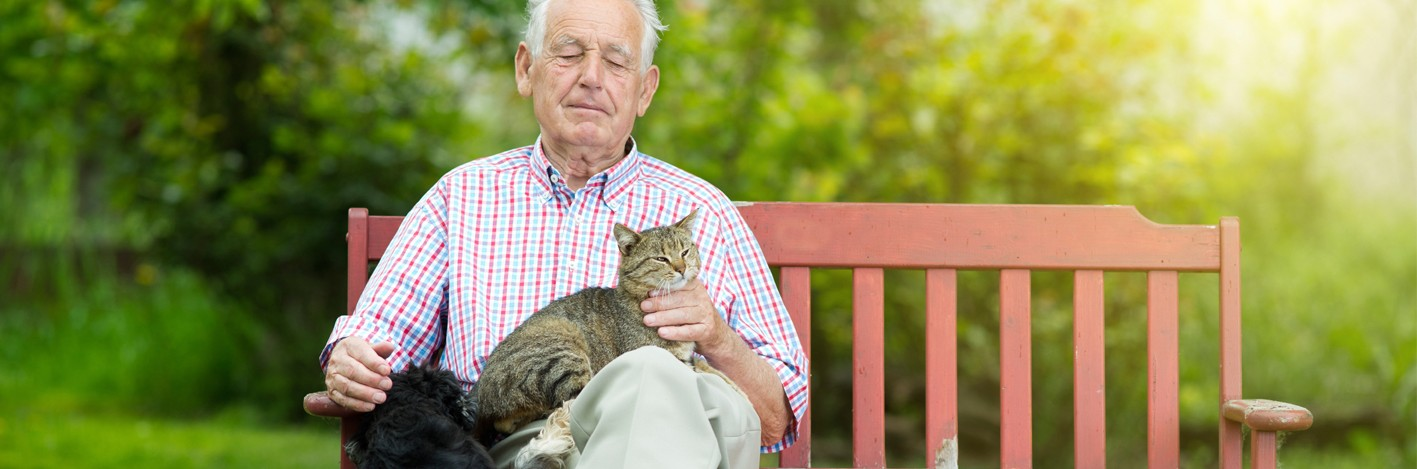 Old-man-with-dog-and-cat